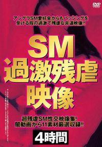 SM激情殘虐影像